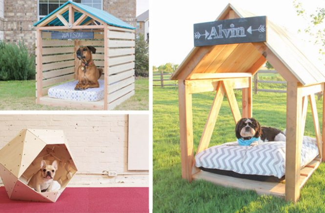10 Free DIY Dog House Plans & Ideas
