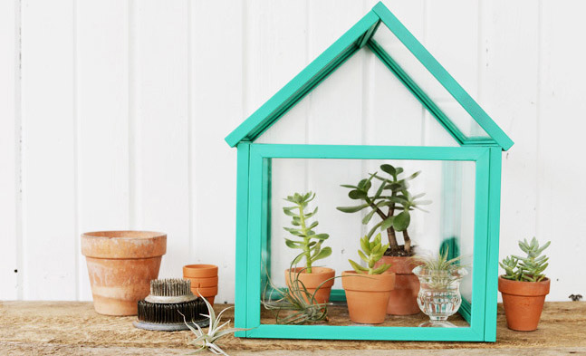 An Eco-Chic DIY Greenhouse