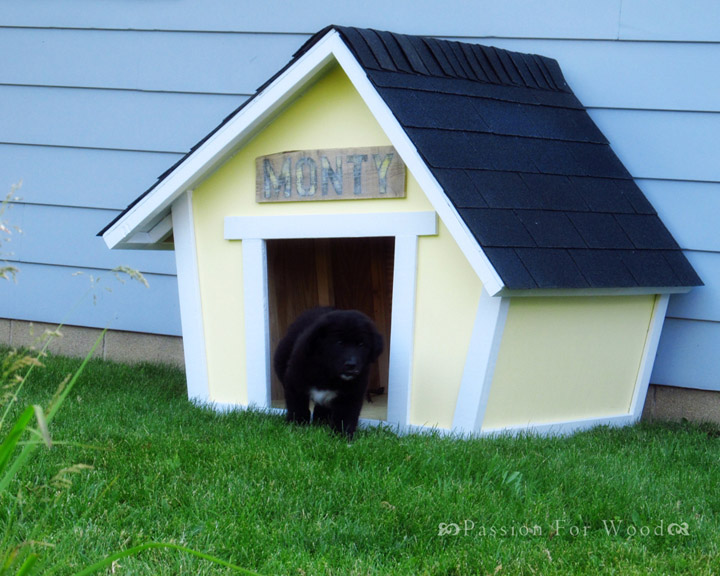 DIY Crooked Doghouse From Ana White