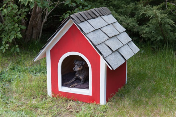 DIY Dog House From Black+Decker