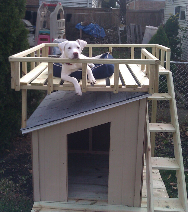 DIY Dog House From Home Depot