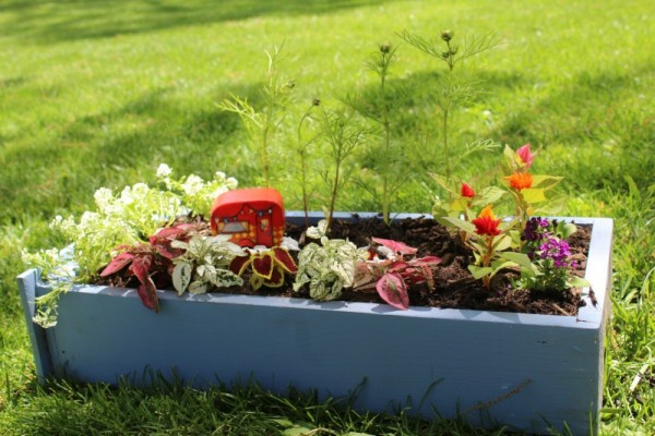 DIY Fairy Garden Craft