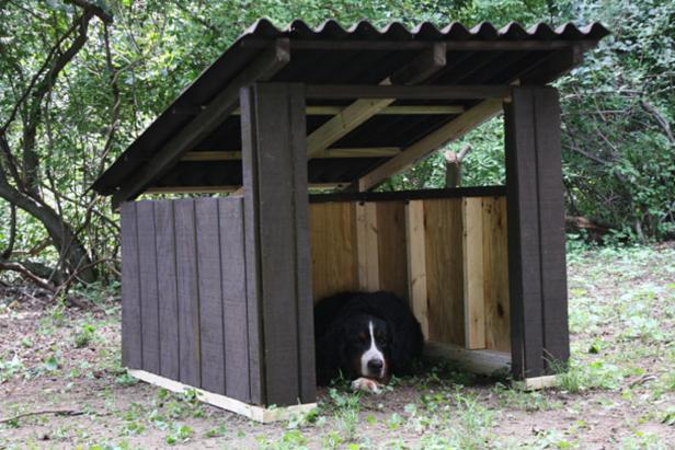 DIY Open-Air Doghouse From DIY Network