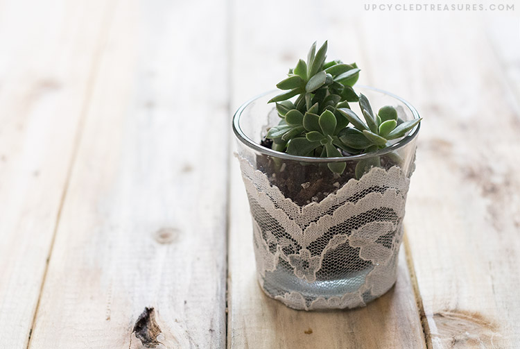 DIY Planter From Candle Jar