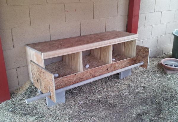 DIY Triplex Nesting Box