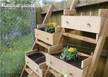DIY Veggie Garden